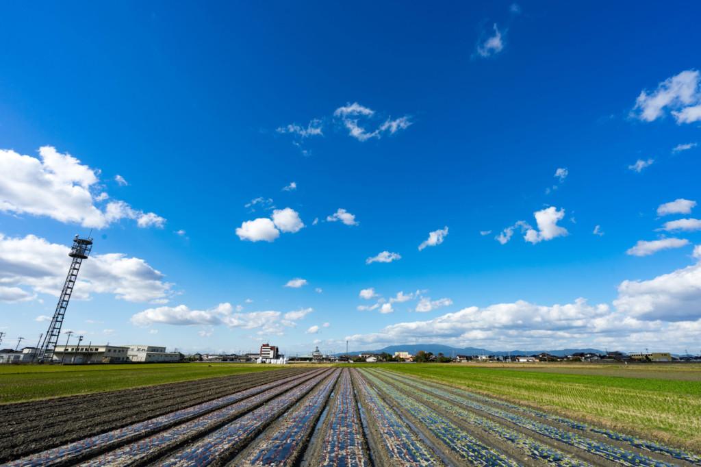 どのようにして週末農業を始めたのか