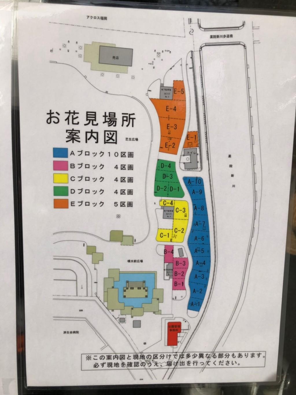 福岡の天神中央公園での花見の予約:区画番号