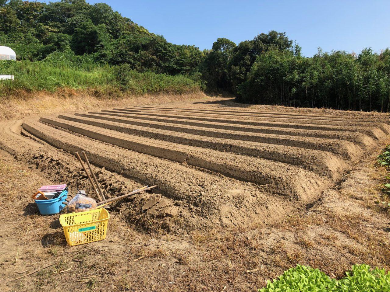 〜福岡 週末農業(第9回目作業)〜 秋冬野菜の苗&種植え