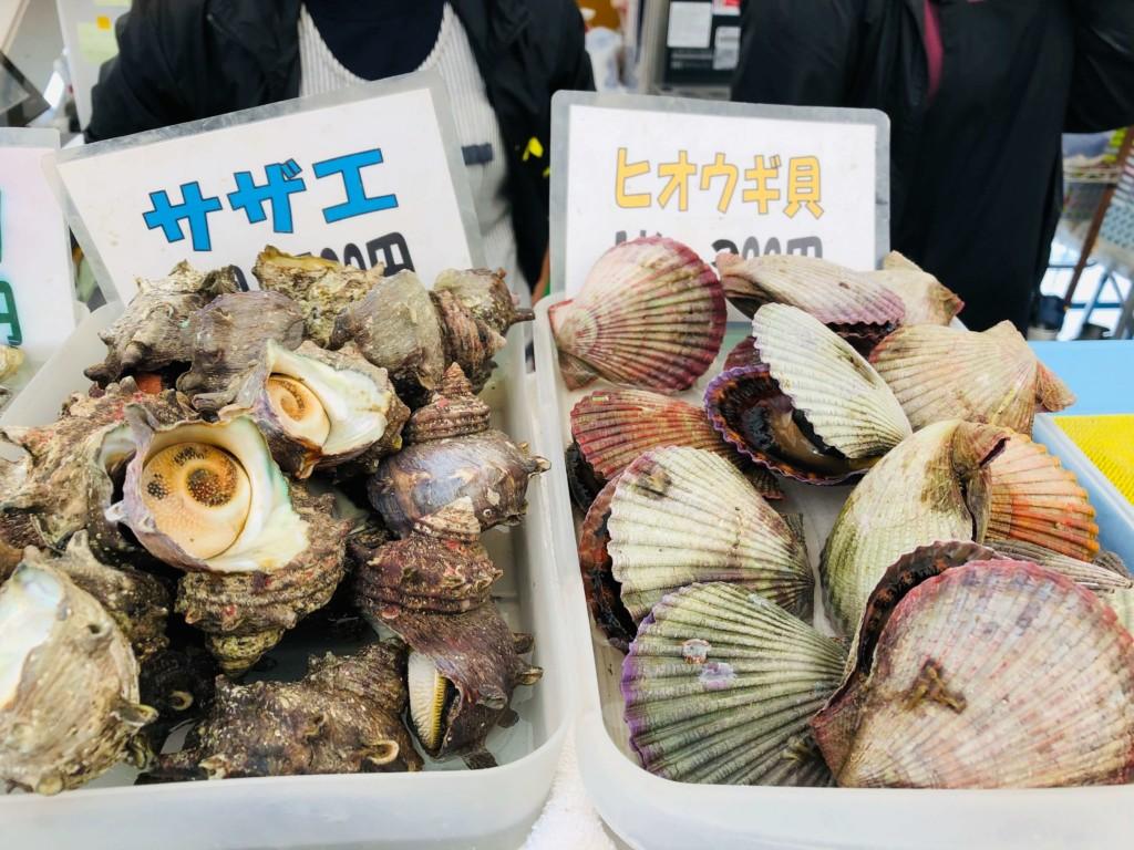 福吉漁港の牡蠣小屋「カキの阿部 飛龍丸」のサザエとヒオウギ貝