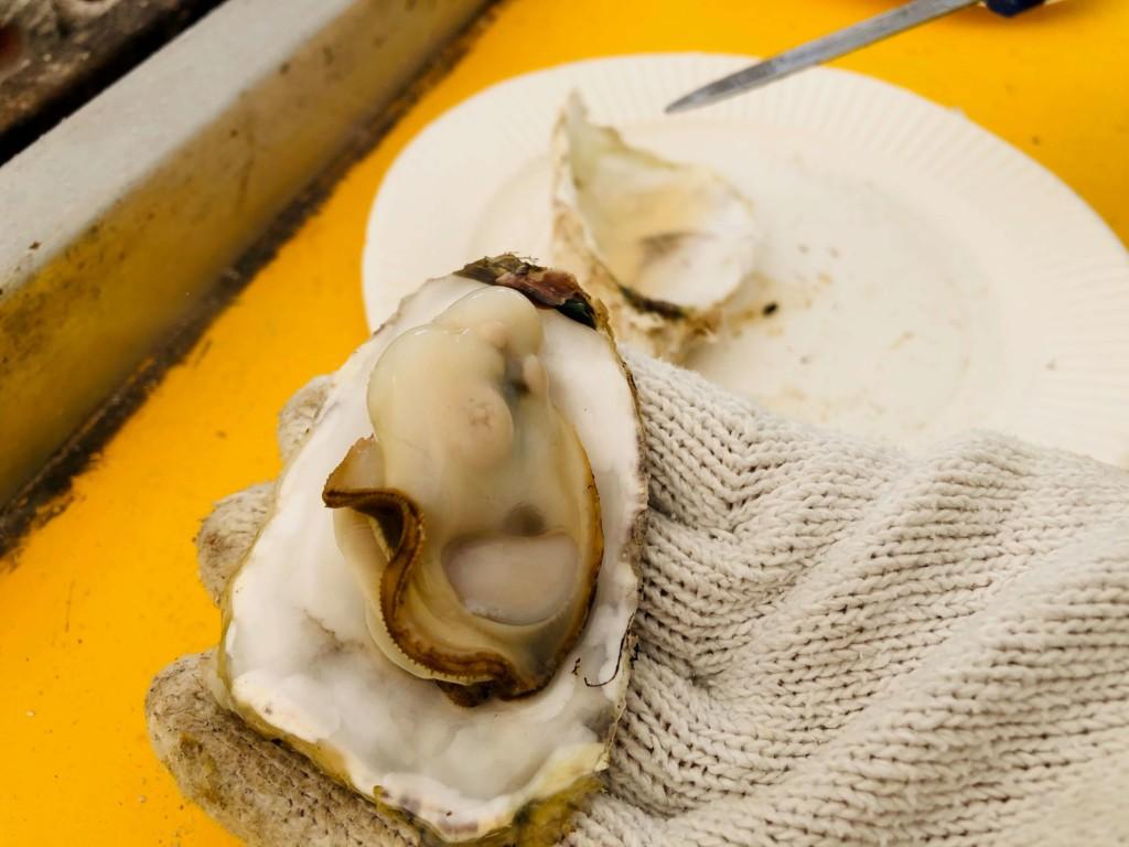 福吉漁港の牡蠣小屋「カキの阿部 飛龍丸」の牡蠣