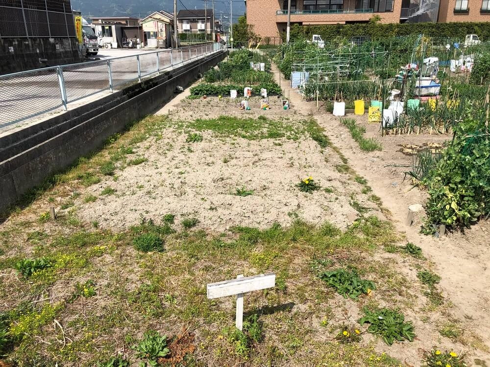 福岡 週末農業 貸し農園の様子
