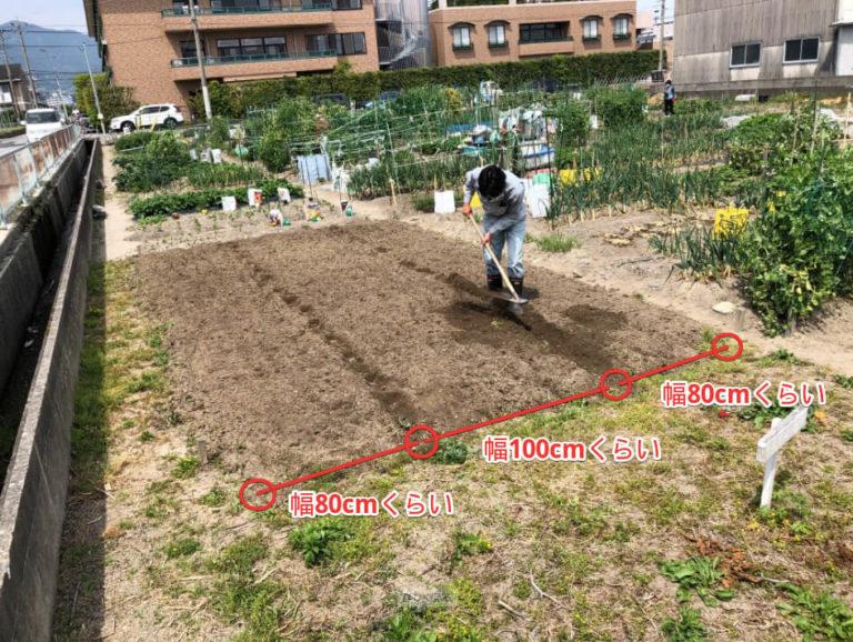 【福岡 週末農業】貸し農園での畝作りの方法