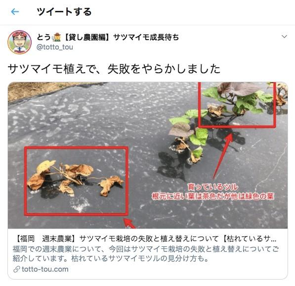ツイッターでの記事紹介