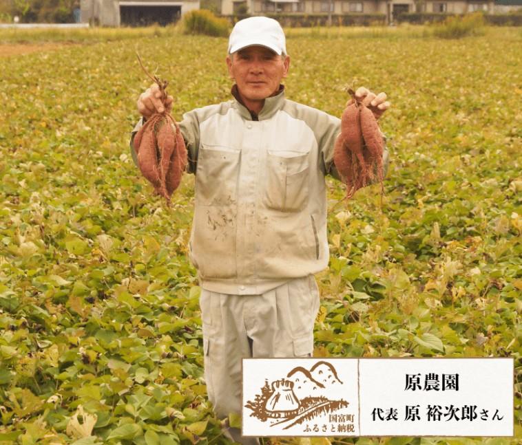 原農園 国富金時の蜜芋