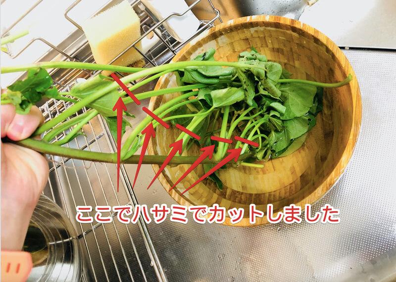 サツマイモつると葉の料理