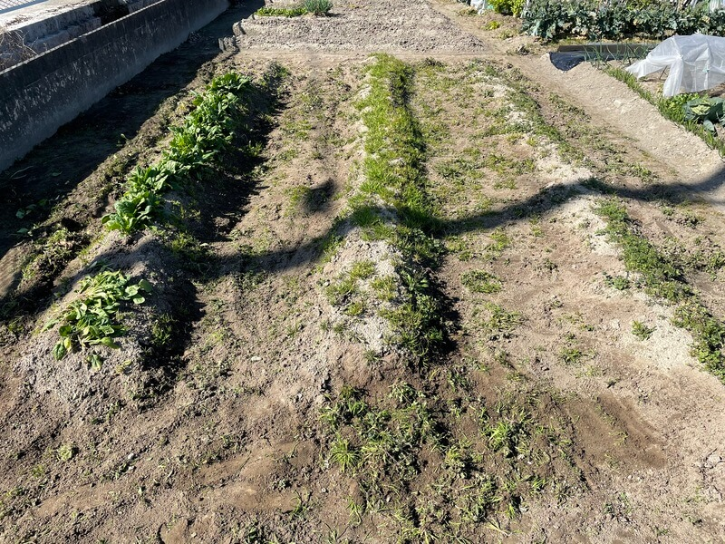 福岡の貸し農園