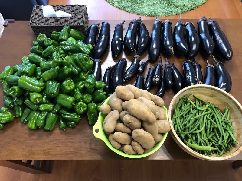 シェア畑 安全で美味しい野菜