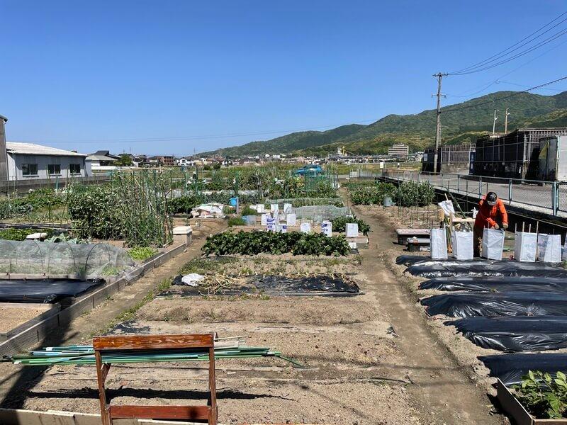 福岡の貸し農園の様子