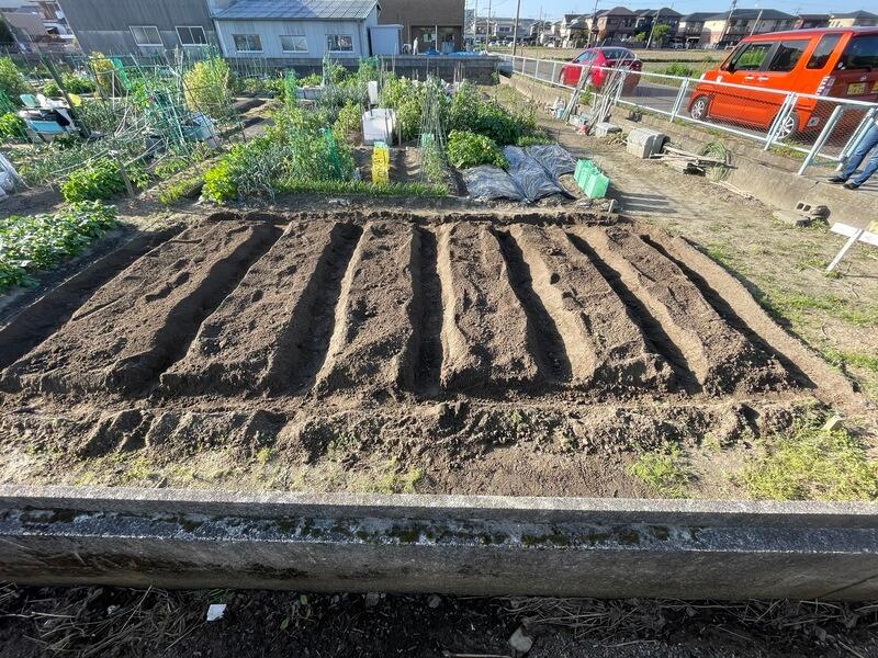 植え付け前の農地の準備【腐葉土と液肥の散布から畝立て・黒マルチ貼りまで】